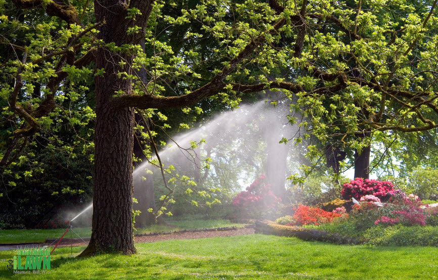Smart Irrigation Month Go iLawn Blog